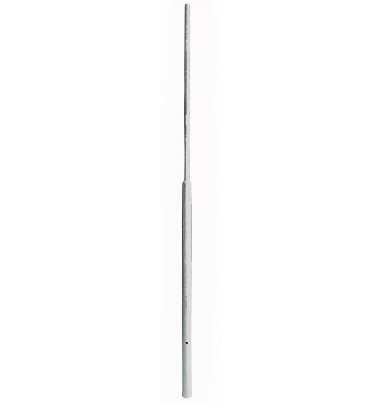 flespaal verzinkt lg 3000 mm met grondanker
