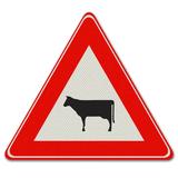 Verkeersbord J28 - Waarschuwing voor vee